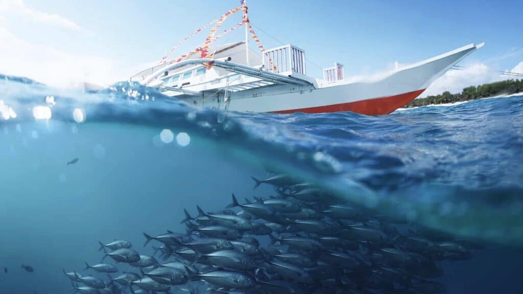 Using Bareboat Charters to Expand Fishing Fleets